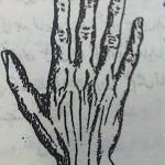 handp